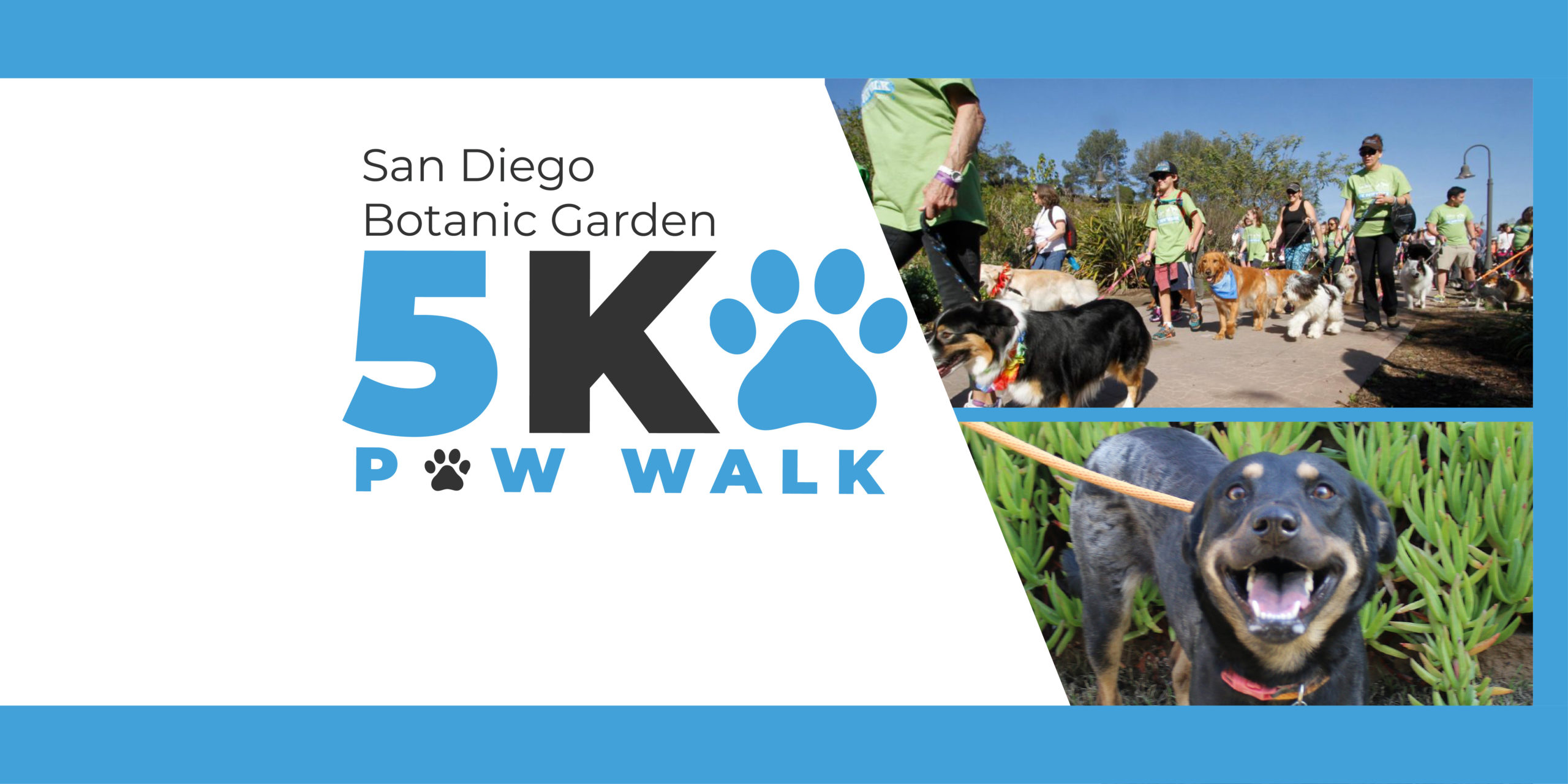 Save the Date / 5K Paw Walk