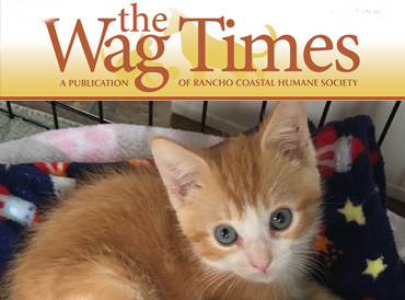 Subscribe to Wag Times