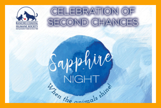 Celebration of Second Chances