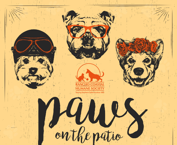 Paws on the Patio