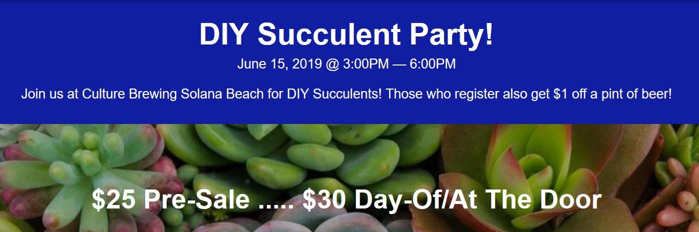 DIY Succulent Party