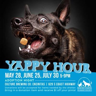 Yappy Hour at Culture Brewing Encinitas!