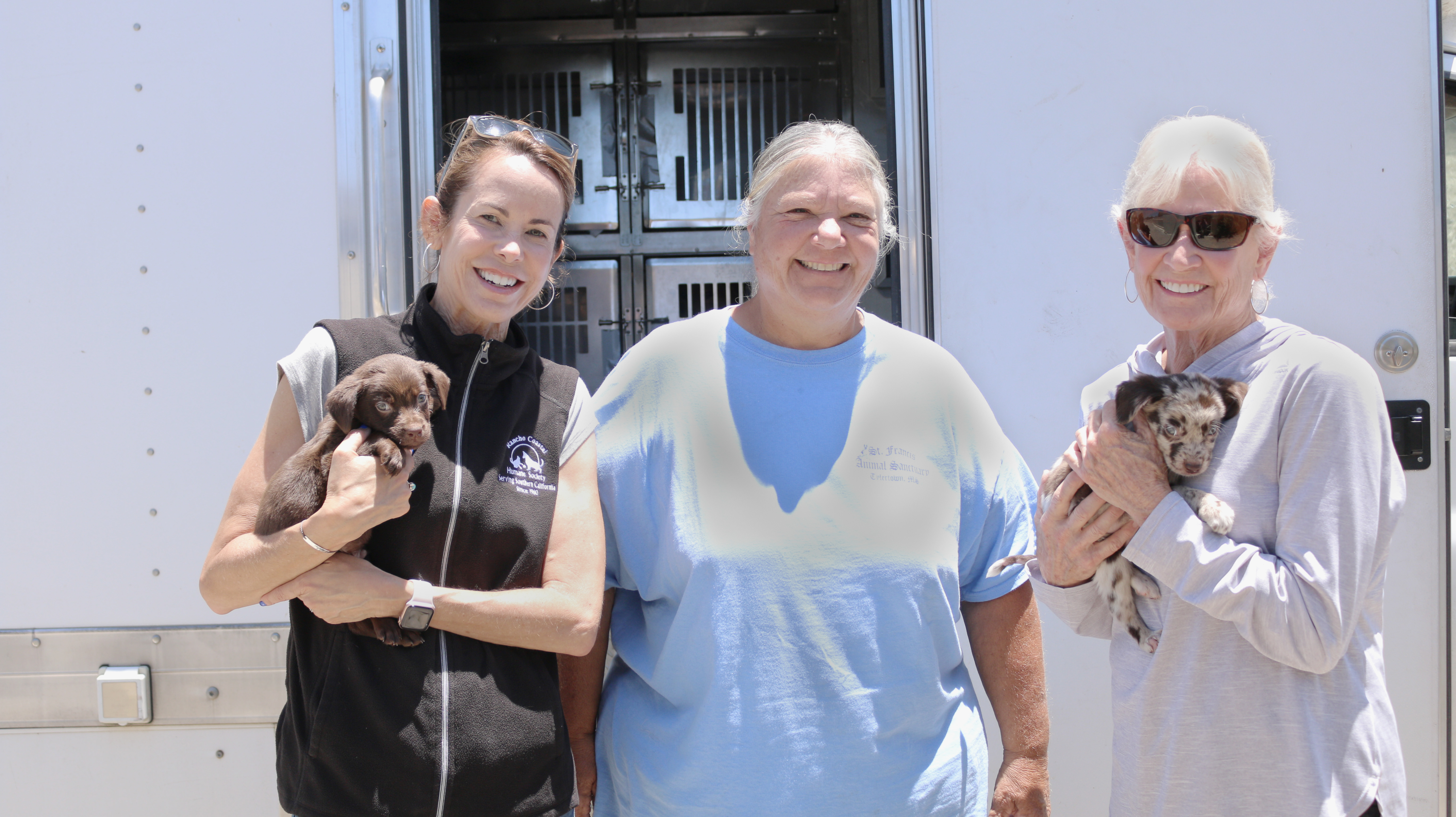 Thanks to Our Foster Care Volunteers, We're Saving Lives that Might Be Lost.