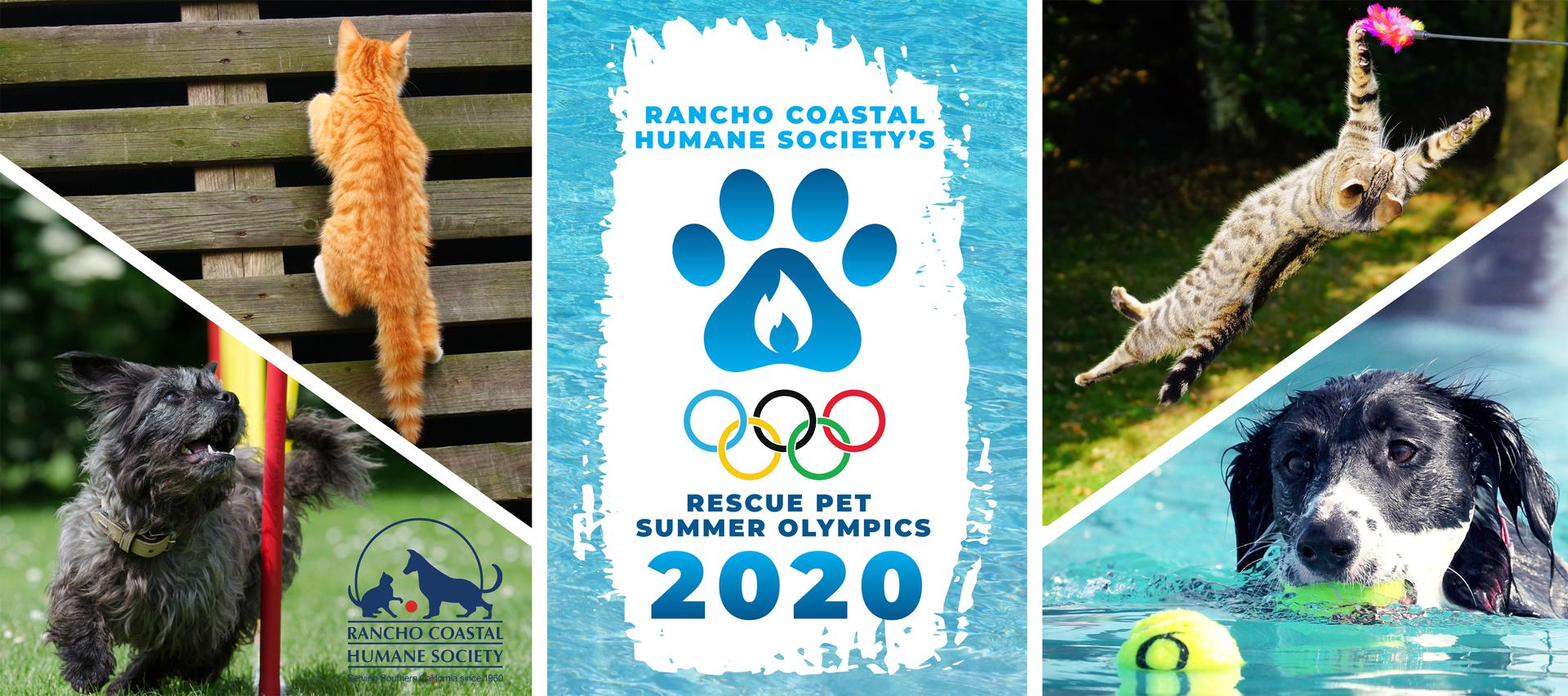 Rescue Pet Summer Olympics 2020