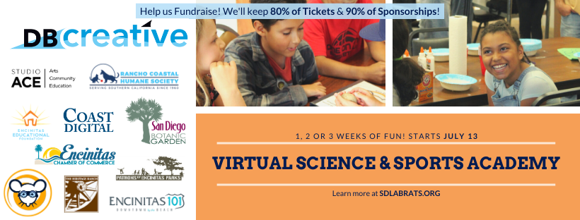 Virtual Summer Science & Sports Academy