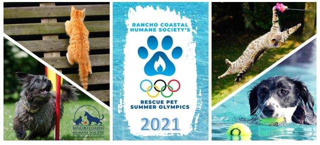 Rescue Pet Summer Olympics 2021